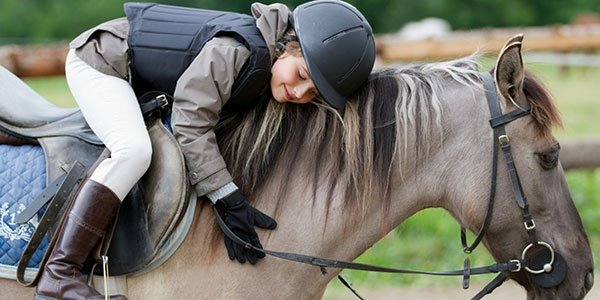 Horse Riding - Lovely Equestrian On A Horse