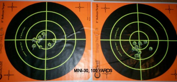 P.G. MINI-30 100 YARDS