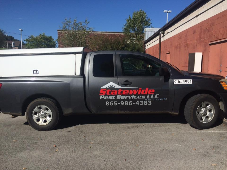 Statewide Pest Services