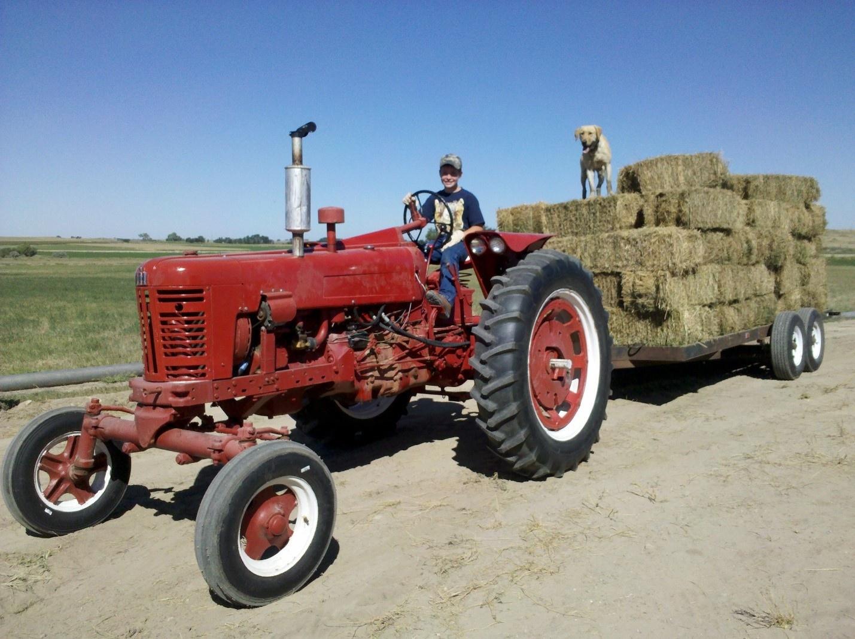 Nik, age 10, and Drake, hauling hay