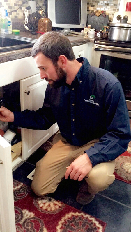 Inspecting Kitchen Cabinets