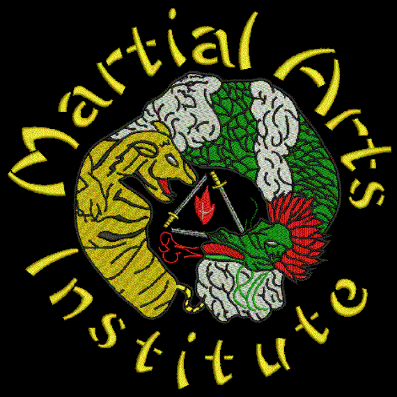 Team Martial Arts Institute