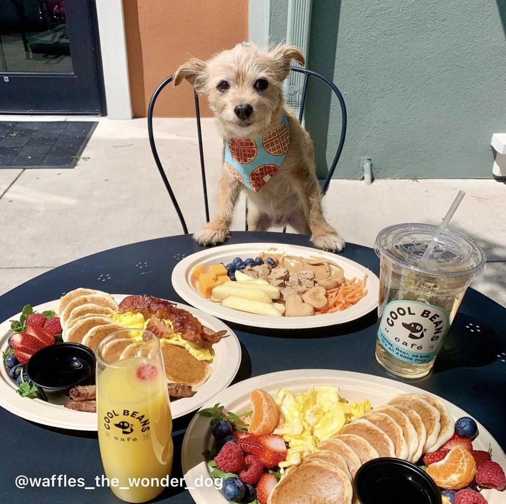 https://0201.nccdn.net/1_2/000/000/124/843/breakfast-plate-2-min.jpg