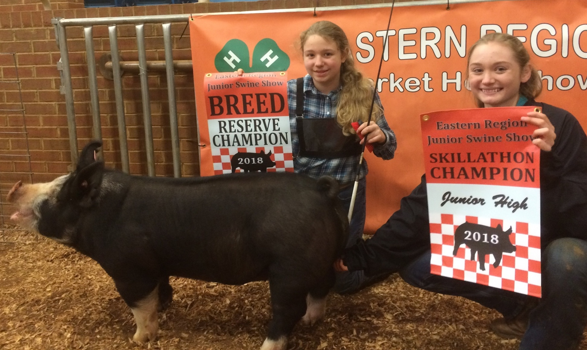 Abigail Henry  2018 Tennessee Eastern Region Show Reserve Champion AOB