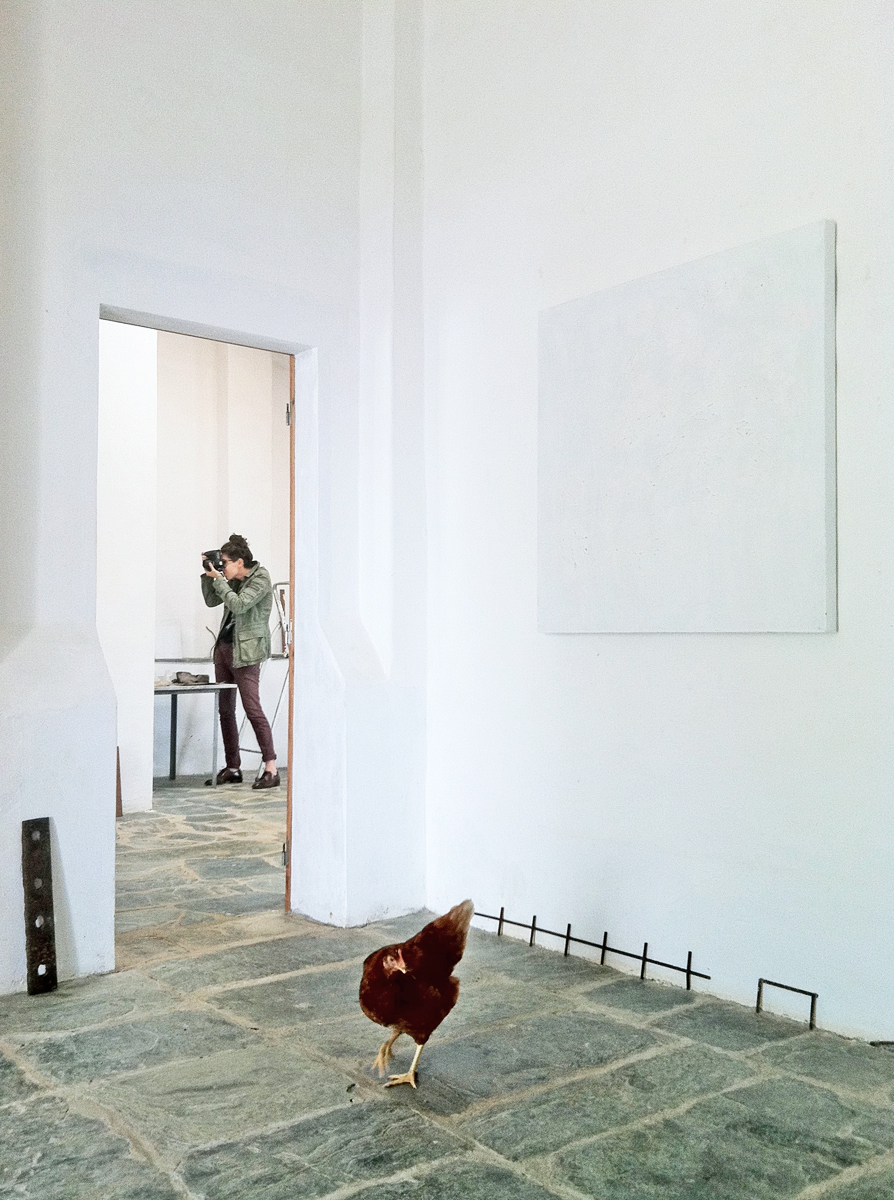 A white space with minimalist art and objects, a photographer and a chicken.