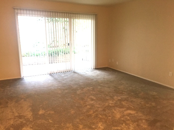 Living room with new carpet and  sliding-glass doors that lead to the patio