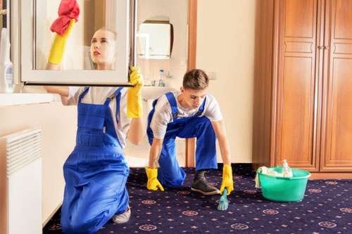 Cleaning Service Carpet And Windows