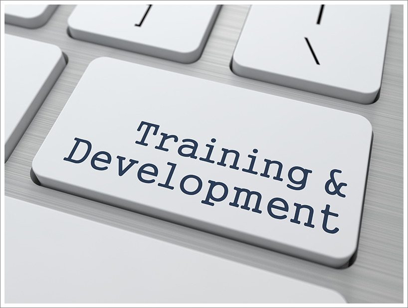 Training and development||||