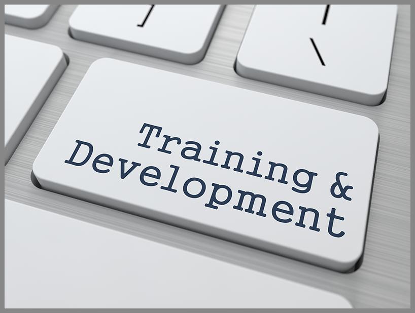 Training and development||||