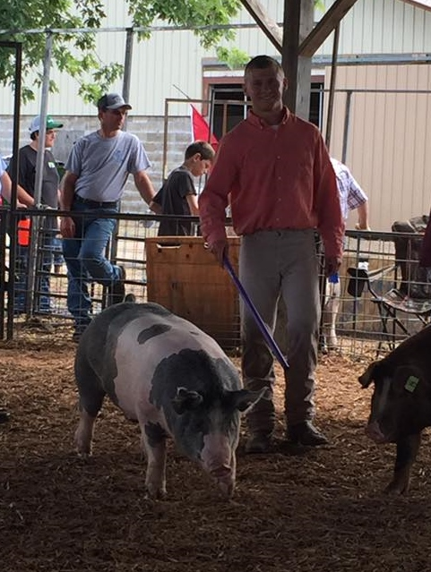 Carrick Wigger Overall Champion Market Hog Average Daily Gain Winner - 2.71lbs/day gain  Missouri 4-H / FFA Show