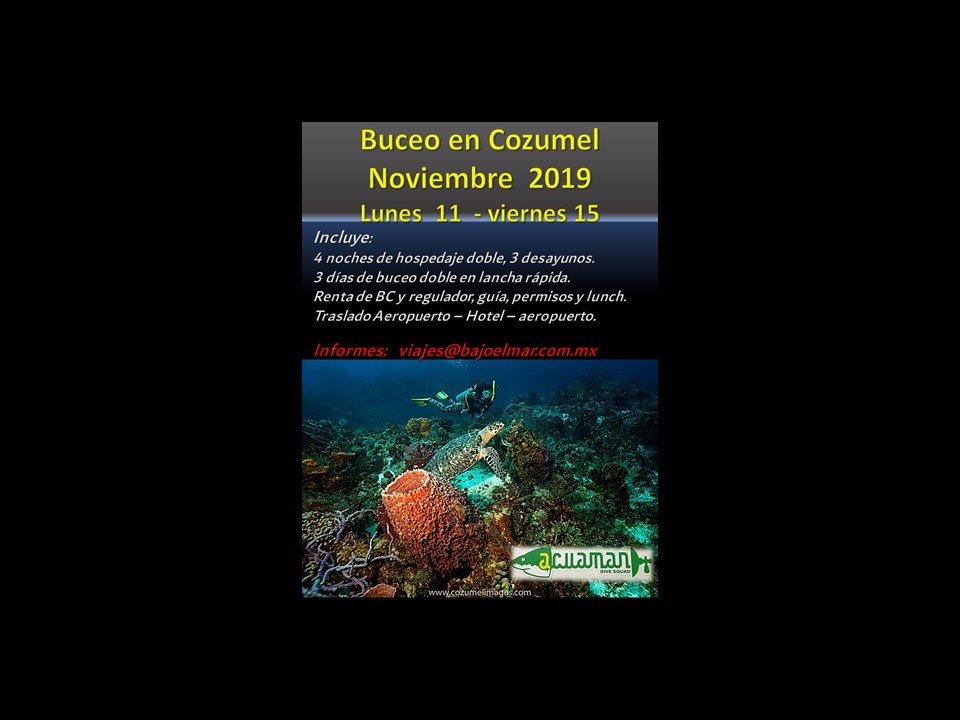 https://0201.nccdn.net/1_2/000/000/130/0e3/WEB-Buceo-en-Cozumel-11---16-Noviembre-960x720.jpg