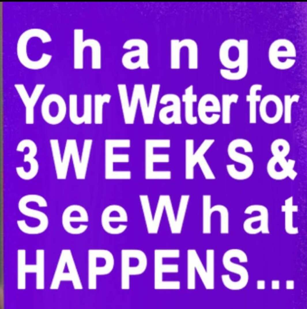 Change Your Water For 3 Weeks