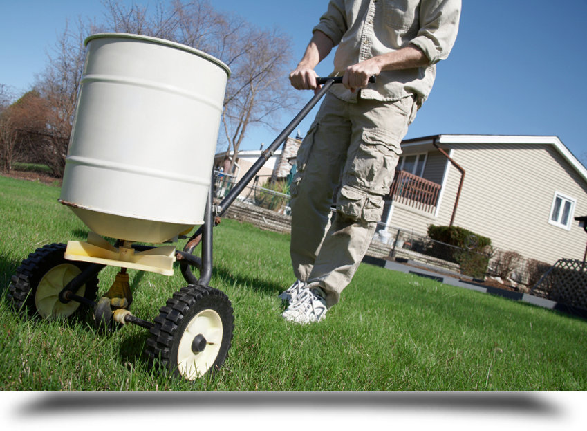 Expert lawn care specialists||||