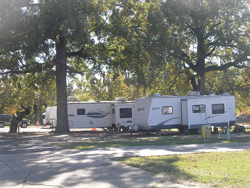 RV park and trees
