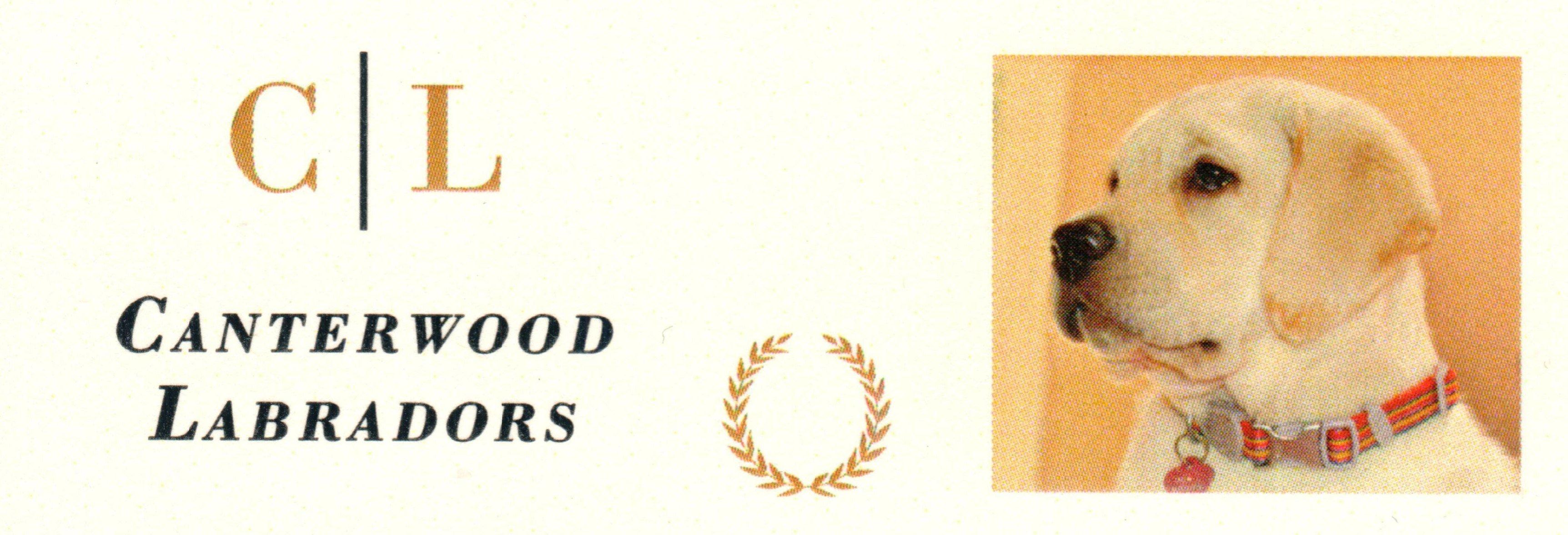 Canterwood Labradors