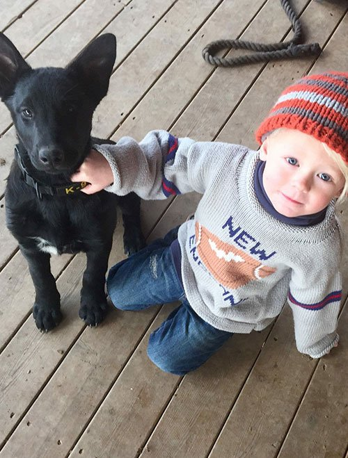 Kid Playing With A Puppy