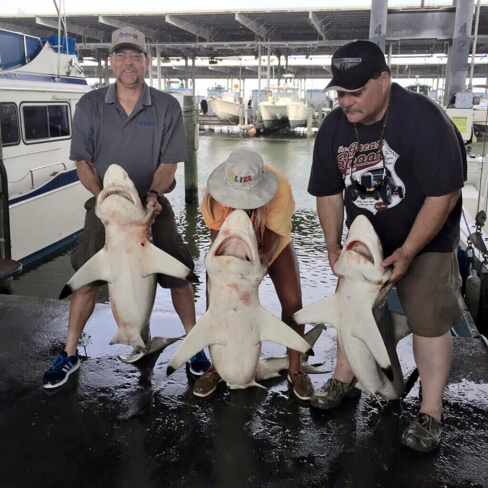 https://0201.nccdn.net/1_2/000/000/133/2fe/3-sharks-galveston-tx-fishing-charters.jpg