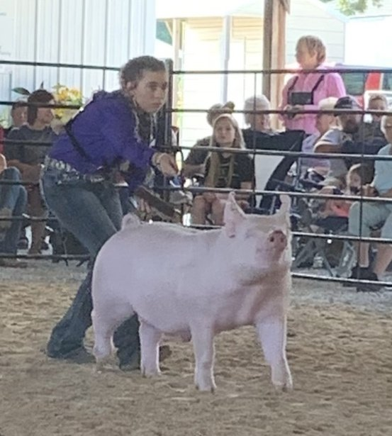 Lena Stricklen 2019 Phelps County Fair, Missouri Grand Champion Overall Market Hog