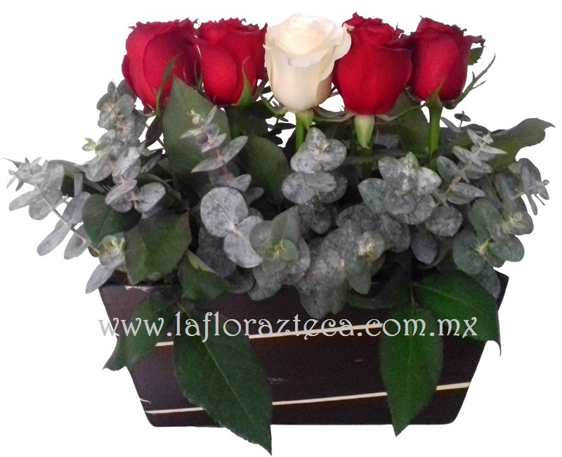 San Valentin 053 $ 630.00 pesos