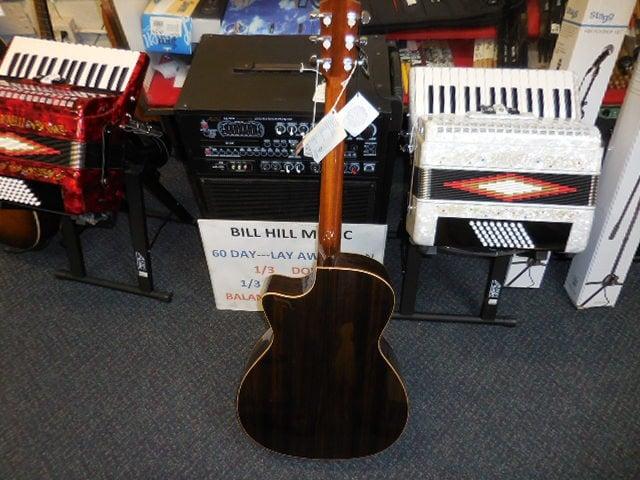 Teton Ebony Guitar - back