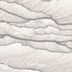 https://0201.nccdn.net/1_2/000/000/136/4f0/Salt-Flats_V2_12x12-300x300.jpg