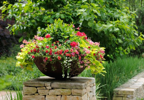 Container Garden on Stone Wall