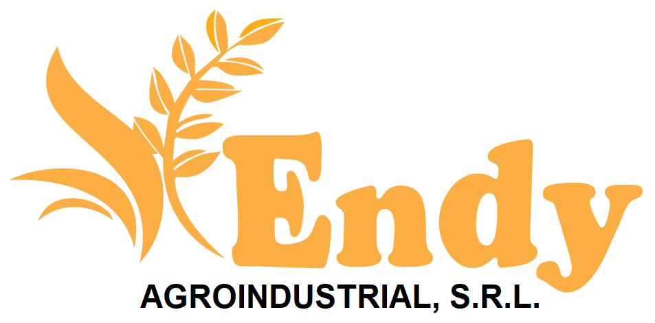 https://0201.nccdn.net/1_2/000/000/136/895/Endy-Industrial-png-953x470.png