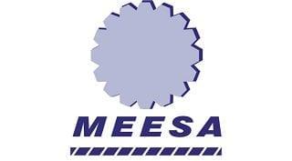 MEESA