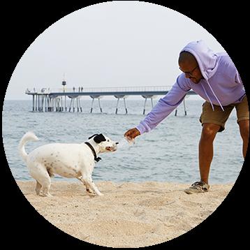 Pet Care Expert