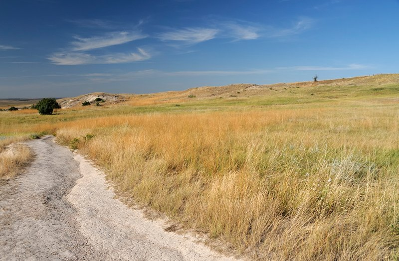 Hill trail isolated grassland