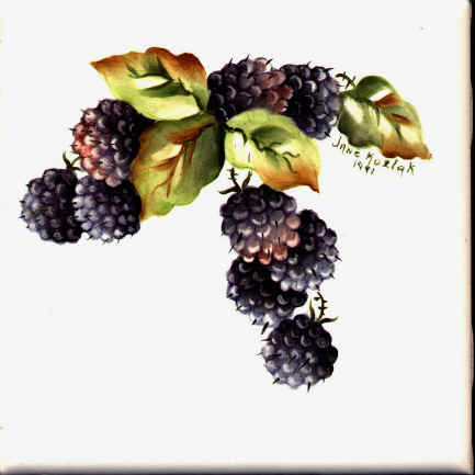 https://0201.nccdn.net/1_2/000/000/13b/251/blackberries.jpg