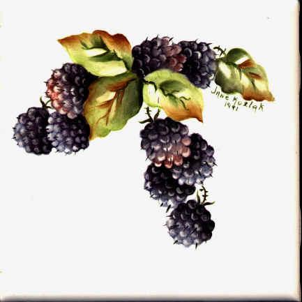 https://0201.nccdn.net/1_2/000/000/13b/251/blackberries.jpg