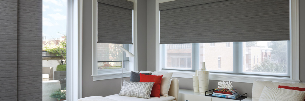 Roller and Panel Shades