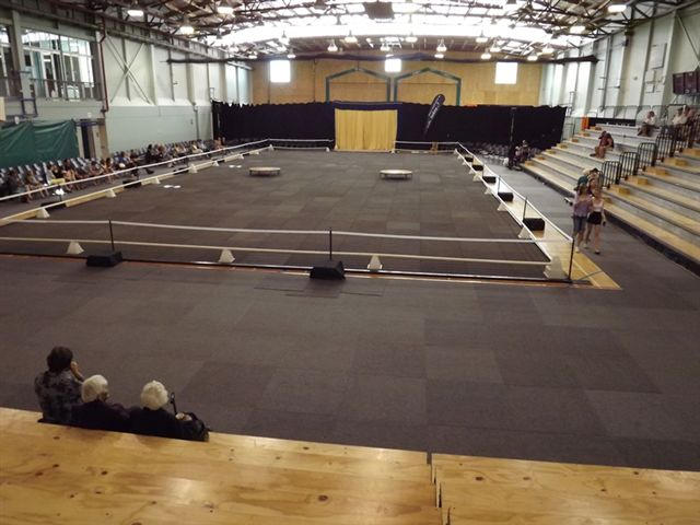 SETTING UP GYM FOR EQUESTRIAN SHOW WITH CARPET TILES