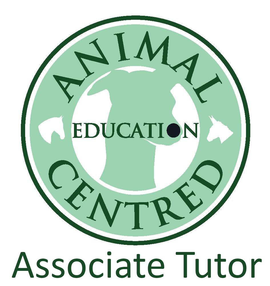 https://0201.nccdn.net/1_2/000/000/13b/e3f/logo4.png