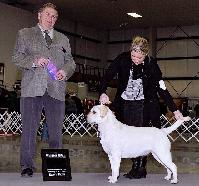L'Una Winner's Bitch Linn County Kennel Club, 2/2011