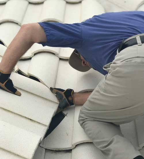 Roof Care Services