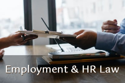 Employment Lawyer, Human Resources Consultant, HR Consultant