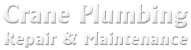 craneplumbingrepairandmaint.com