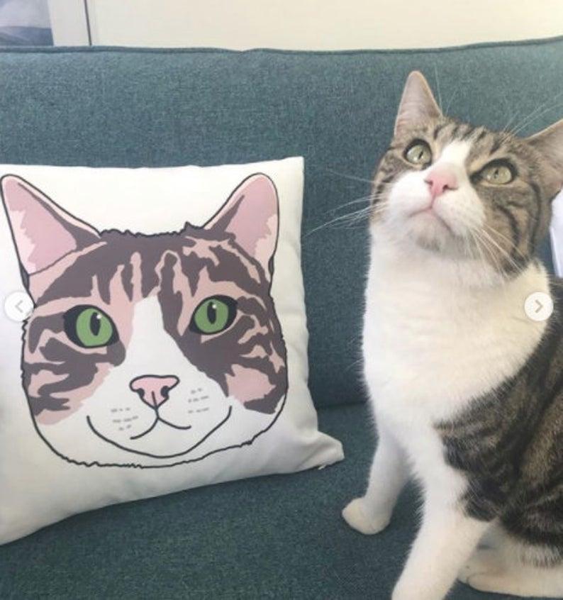Custom Cat Cushion