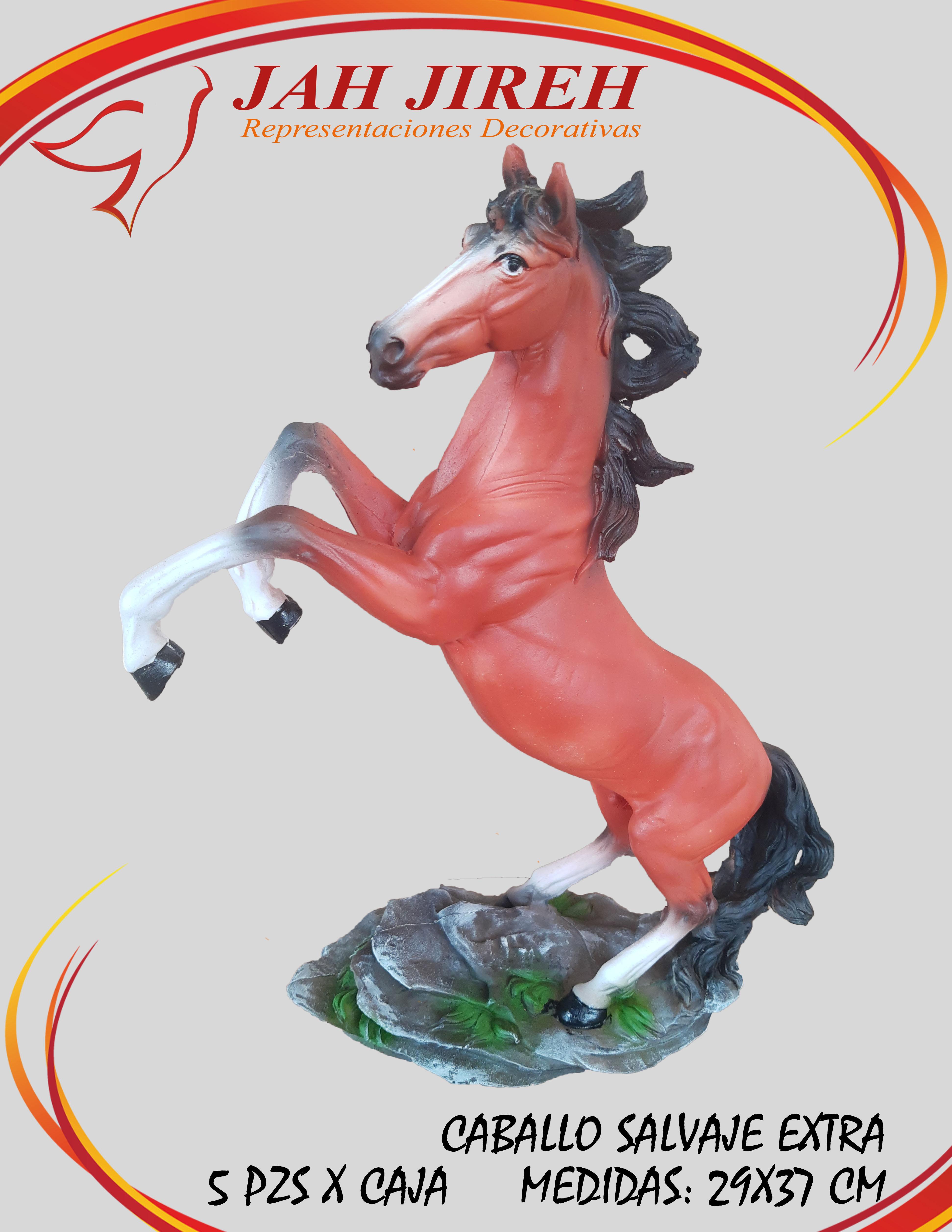 https://0201.nccdn.net/1_2/000/000/140/5f0/caballo-salvaje-extra.jpg
