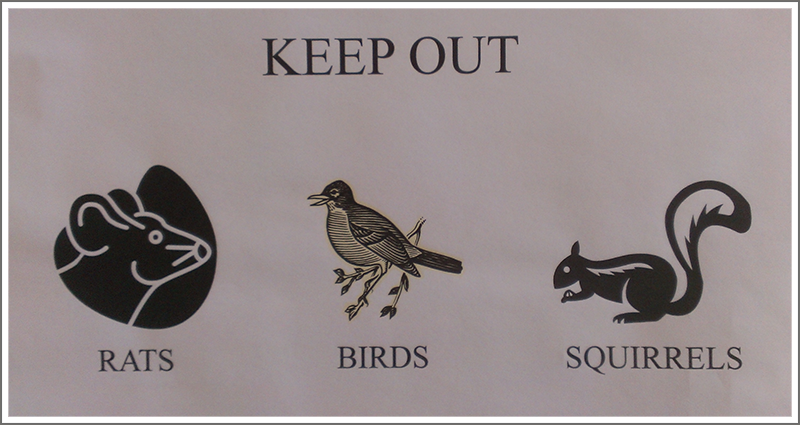 Keep out rats, birds and squirrels||||