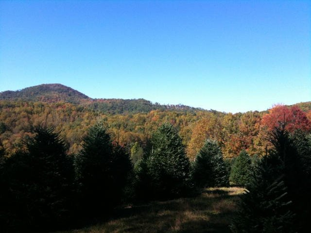 Surrounding mountains full of fall color. If you look closely you can see the townhomes in Echota on the ridge.