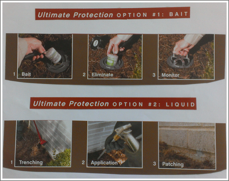 Ultimate termite protection    