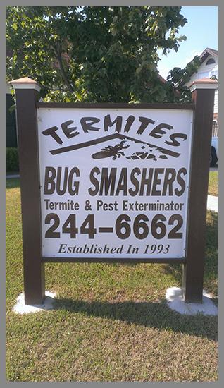 Termites||||