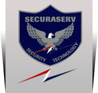 securaserv.com