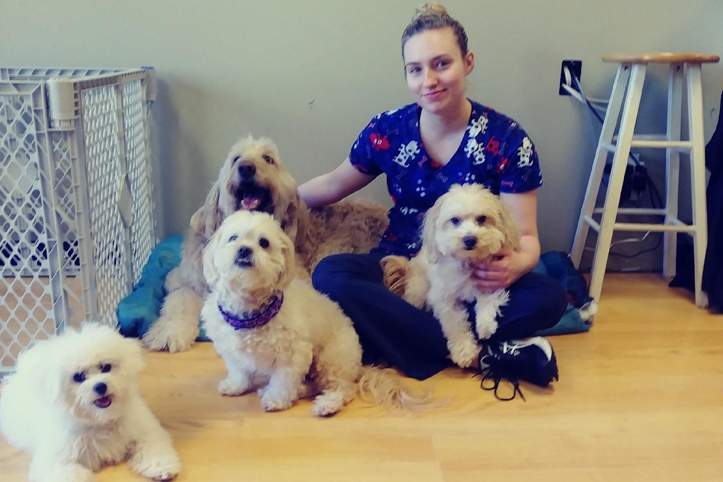 https://0201.nccdn.net/1_2/000/000/142/321/pile-o--dogs-1458x972.jpg