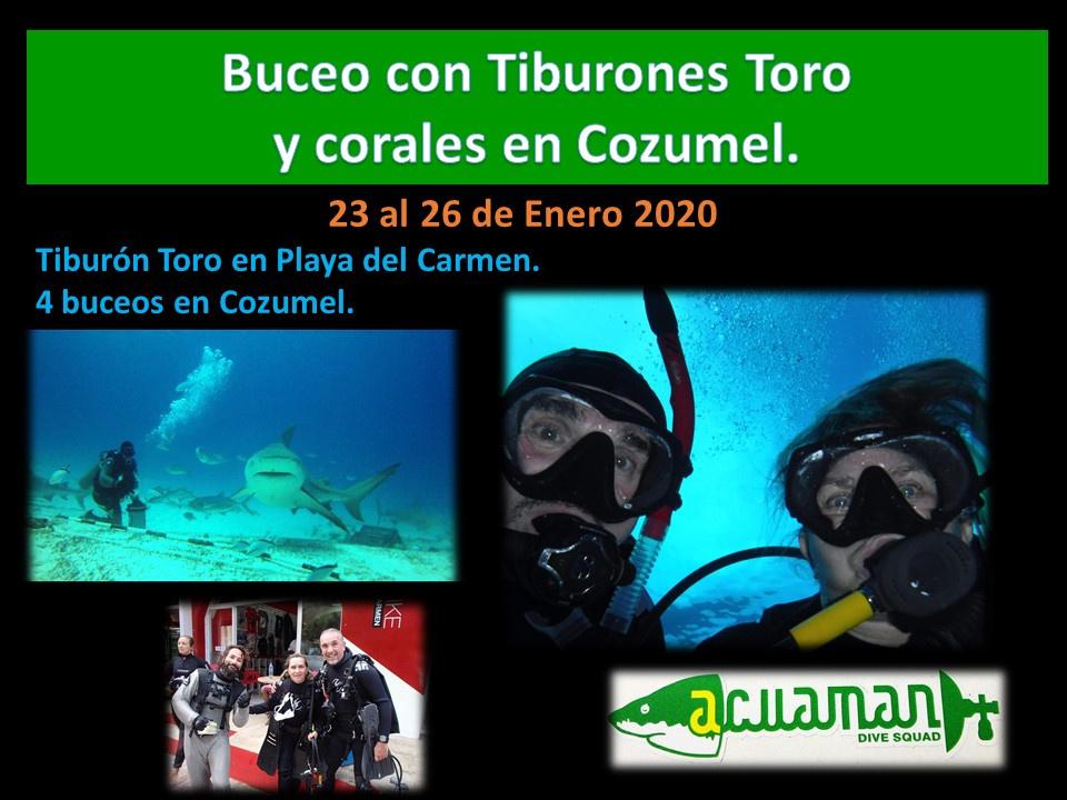 https://0201.nccdn.net/1_2/000/000/142/c2f/Enero-23---26--2020--Toros-y-Arrecife-960x720.jpg