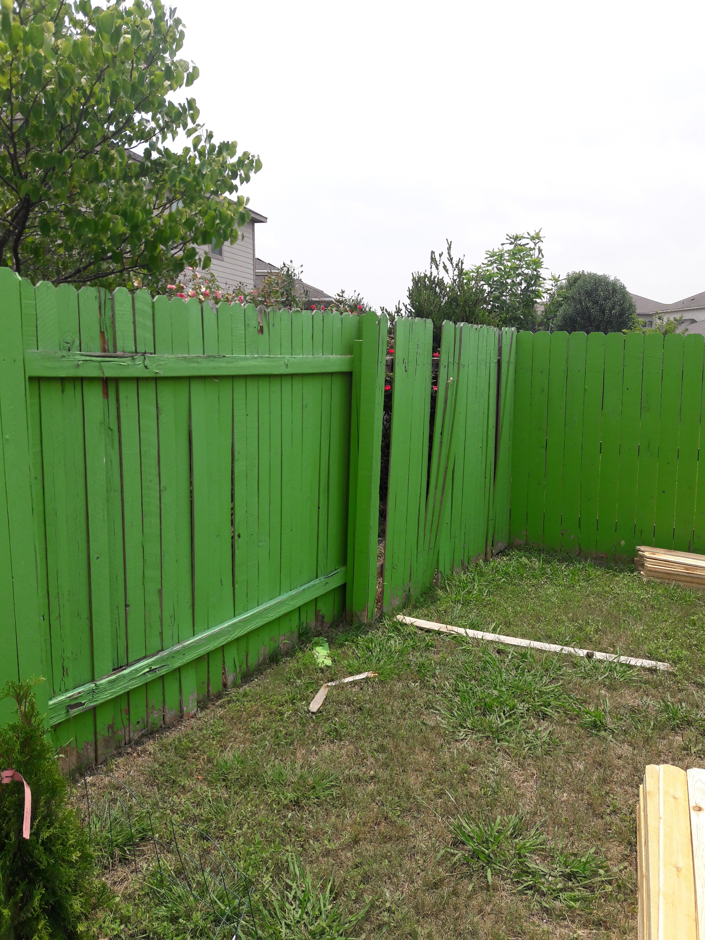 Green Backyard Fence
