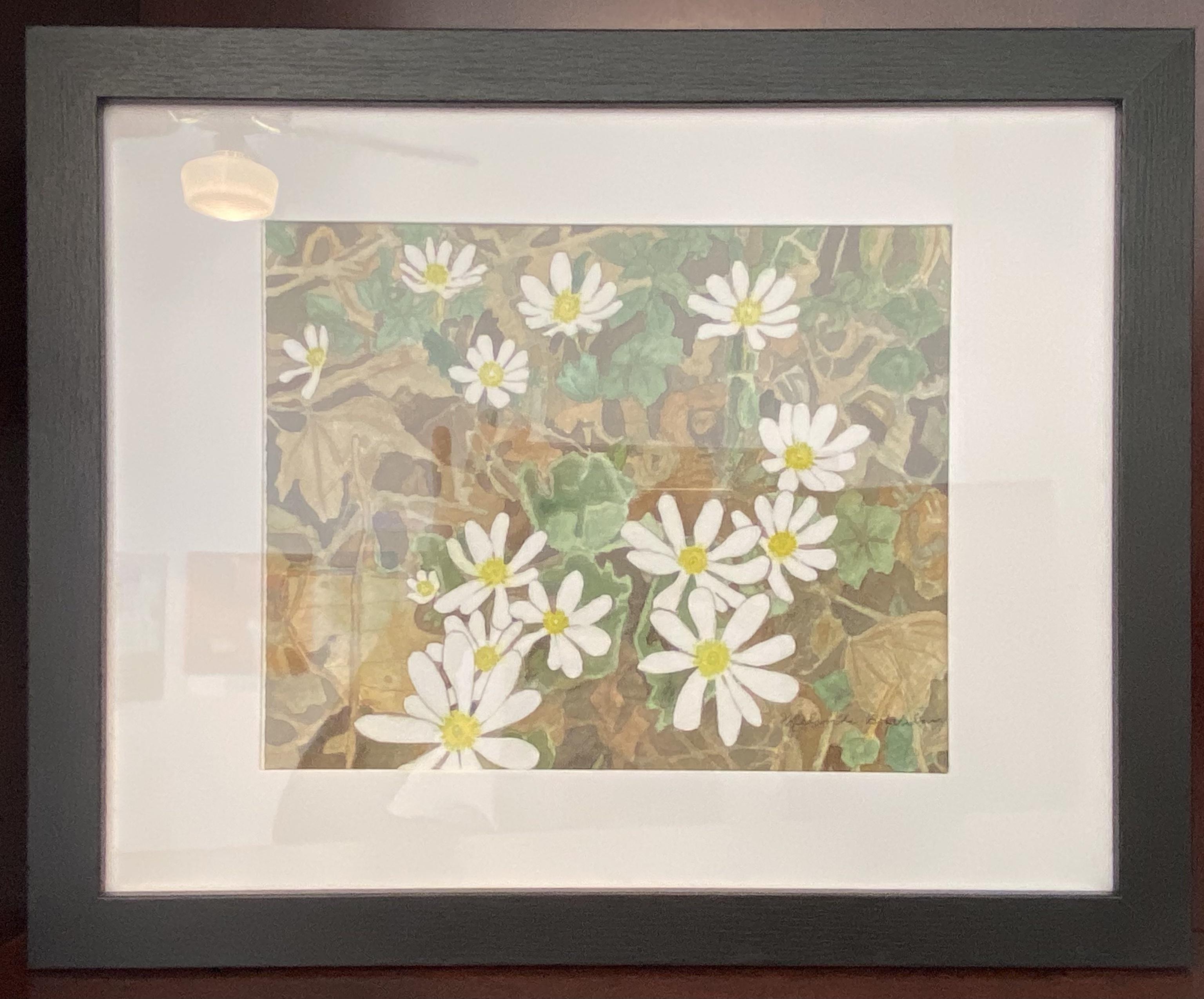 "Bloodroot Flowers Watercolor 8""x10"" $275. SOLD"